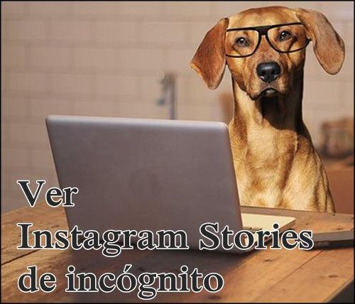 Ver stories en modo incognito