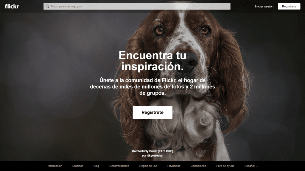 Flickr banco de imagenes