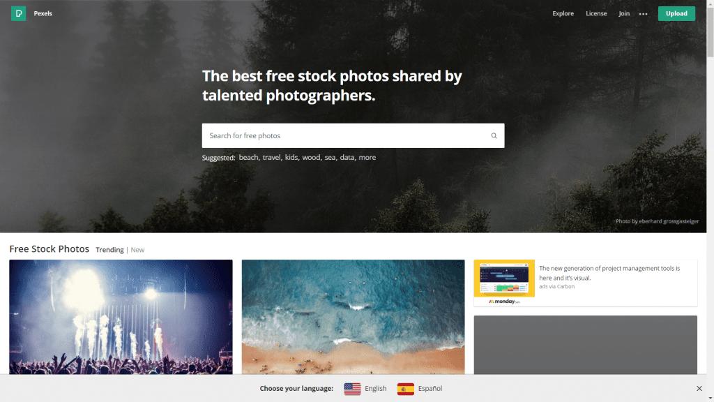 Pexels Image Bank