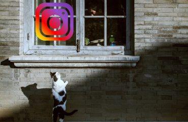 Ho etsahalang ha o thibela motho ho Instagram
