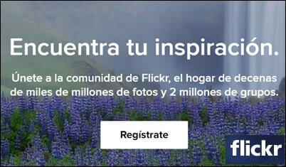 Flickr ou Instagram